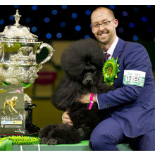Crufts tickets